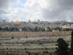 View from Dominus Flevit